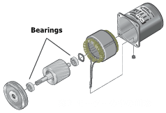 Bearings inside an AC motor