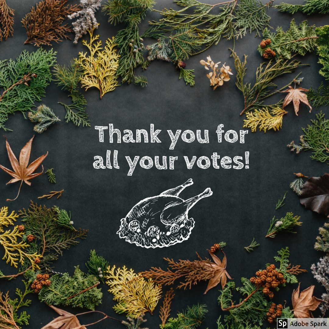 Thank you for all your votes!